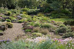 The rock garden at Glen Chantry