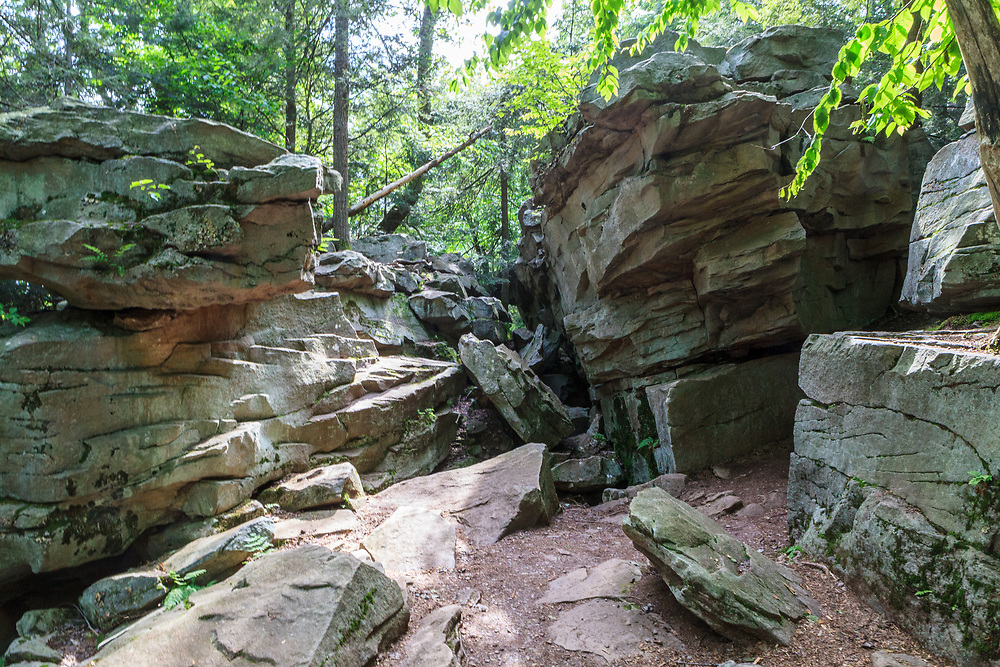 Rock formations in Pennsylvania's Ricketts Glen State Park.