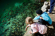 Two children (5 years old, 9 years old) attracting fish in lake. Plitvice National Park, Croatia