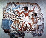 Ancient Egyptian hunting wildfowl with a throwing stick. Picture shows Papyrus reed bed with fish and birds. Papyrus (Cyperus papyrus), the paper reed, which was used to produce papyrus, the Egyptian writing material.  Tomb of Nebamum or Nebmum, 18th Dynasty. 14th century BC.  Wall painting.  British Museum, London.