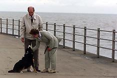 Dog on Beach 2000