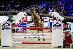 Vandenbossche Bjorn, BEL, W-Helios v. Lindehoeve Z<br /> Jumping Mechelen 2019<br /> © Hippo Foto - Sharon Vandeput<br /> 28/12/19