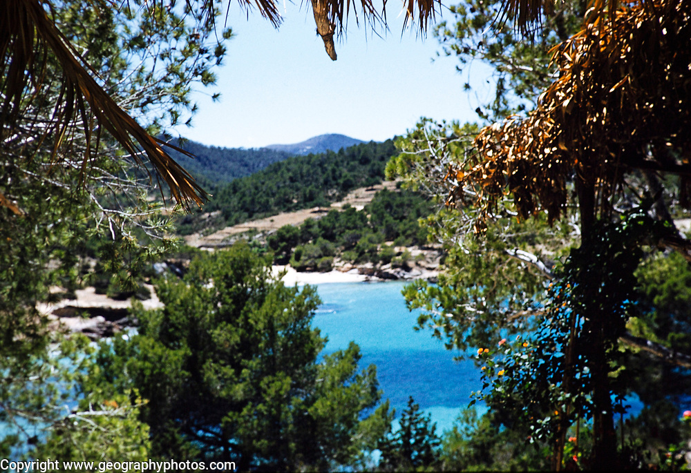 Coastal landscape view through trees of blue sea sea sandy beach,  island of Ibiza, Balearic Islands, Spain, 1950s
