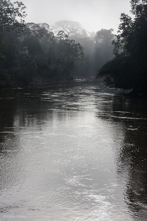 Misty river in Yasuni National Park. Pontificia Universidad Catolica del Ecuador, Estacion Biologica Yasuni, Yasuni National Park, Ecuador.