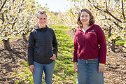 Alice and Nellie of Oregon Agricultural Trust