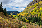 Hike through yellow aspen fall colors to Booth Creek Falls (4.3 miles / 1400 ft gain) on Booth Lake Trail #1885, near Vail, in Colorado, USA.