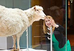 Pictured: Sophie Goggins, Assistant curator biomedicine wishes Dolly the cloned sheep happy 20th birthday<br /> <br /> The National Museum of Scotland will launch ten new galleries on 8 July following a £14.1 million redevelopment in their 150th year.  <br /> <br /> Ger Harley | EEm 5 July 2016
