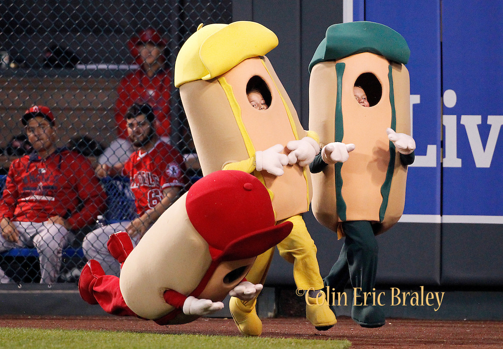"""Players in the Los Angeles Angels bullpen watch as a participant in the """"Hot Dog Run"""" falls along the warning rack during a race between innings at a baseball game against Kansas City Royals the at Kauffman Stadium in Kansas City, Mo., Sunday, Aug. 16, 2015. (AP Photo/Colin E. Braley)"""