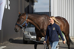 Sarah Algotsson Ostholt, Reality 39<br /> Departure of the horses to the Rio Olympics from Liege Airport - Liege 2016<br /> © Hippo Foto - Dirk Caremans<br /> 30/07/16