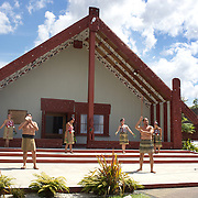 A Maori Cultural Performances at Te Puia, Maori Arts and Crafts Institute, Te Whakarewarewa Thermal Valley, Rotorua, New Zealand..Te Puia is the premier Maori cultural centre in New Zealand, a place of  steaming vents, boiling mud pools and spectacular geysers. Maori culture also includes the National Carving and Weaving Schools while the Maori Cultural performance include Meeting House greeting, Maori traditional dance and the famous Haka. Rotorua, New Zealand, 9th December 2010 Photo Tim Clayton.