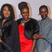 NLD/Amsterdam\/20131028 -Opening Amsterdam Film Week 2013, premiere 12 Years a Slave, ...............