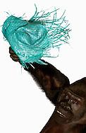 Deutschland, DEU, Krefeld, 2004: Projekt ueber die biologischen Wurzeln der Mode. Die Shootings hierfuer wurden mit Grossen Menschenaffen, die dem Menschen am naechsten sind, im Krefelder Zoo gemacht. Die Tiere waren weder zahm noch trainiert. Die Kleidungsstuecke wurden in die Gehege geworfen und was immer die Tiere damit anstellten, taten sie aus sich selbst heraus. Ein Eingreifen oder gar eine Regie war unmoeglich. Da das Verhalten der Affen im Mittelpunkt stand, wurden die Hintergruende von den Originalfotografien entfernt. Gorilla-Maennchen Massa mit einem Strohhut, gesehen bei Indigo in Muenchen. | Germany, DEU, Krefeld, 2004: Project to look at the basics and roots of fashion. The shootings took place in the Zoo Krefeld with three species of Great Apes who are the nearest to us. The animals were neither tamed nor trained. Whatever the animals did, they did on their own. Any intervention or directing was impossible. To set the focus on the behaviour of the animals itself we removed the background from the original photographs. Gorilla (Gorilla gorilla) male Massa with straw hat seen at Indigo in Munich. |
