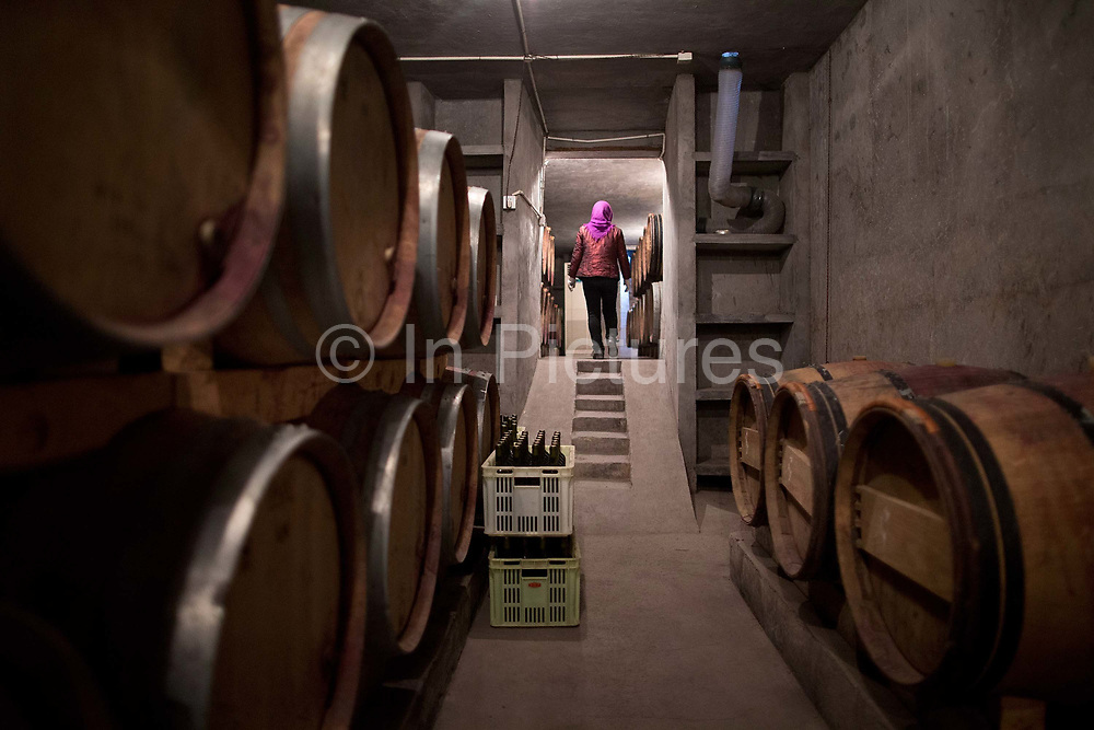 Workers move bottles of wine in the wine cellar at Silver Heights, in Yinchuan, Ningxia Hui Autonomous Region, China on 19 December  2012.  With its dry climates and ample sunshine, and encouraged by the huge boom in Chinese consumer's demand for wine, Ningxia is quickly becoming one of the biggest wine producing regions in China.