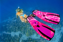 woman snorkeler, diving over coral reef, Kiholo Bay, Kohala Coast, Big Island, Hawaii, USA, Pacific Ocean, MR