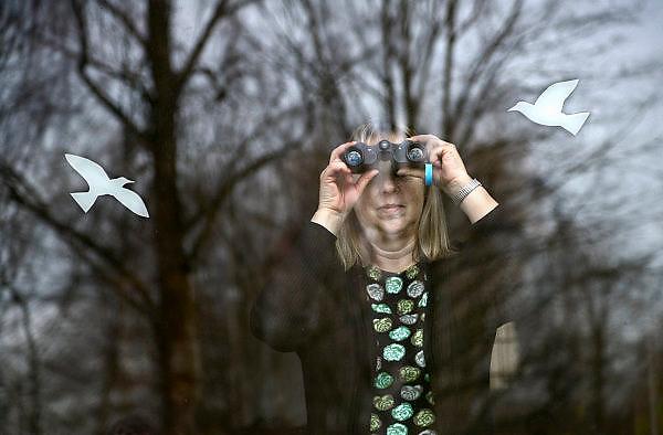 Nederland, Ubbergen, 18-1-2014Een vrouw kijkt met een verrekijker in de tuin tijdens de nationale tuinvogetelling. Op het raam waar zij achter staat zijn silhouetten ven vogels geplakt om te voorkomen dat echte vogels tegen het glas vliegen.Foto: Flip Franssen/Hollandse Hoogte