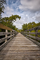 Weedon Island Nature Preserve Walkway. Image taken with a Nikon D2xs camera and 14-24 mm f/2.8 lens (ISO 100, 14 mm, f/11, 1/125 sec)