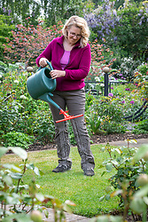 Feeding a lawn with a high nitrogen liquid feed. Using a watering can with a dribble bar attachment.