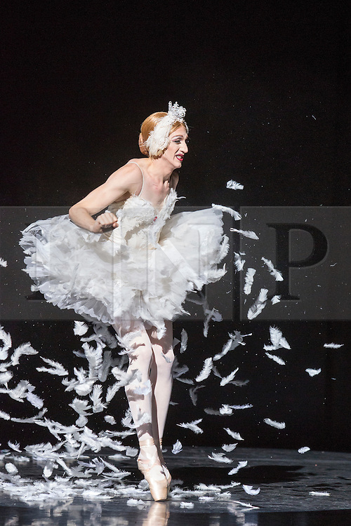 © Licensed to London News Pictures. 16/09/2015. London, UK. The Dying Swan is danced by Eugenia Repelskii (Joshua Thake). Photocall for Les Ballets Trockadero de Monte Carlo at the Peacock Theatre. The all-male dance troupe, The Trocks, presents two different mixed bills at the Peacock Theatre from 15 to 20 September 2015. Photo credit: Bettina Strenske/LNP