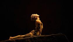 "© Licensed to London News Pictures. 15/05/2012. London, England. Rambert Dance Company - London Spring Season 2012 performing ""L'Après-midi d'un faune"", the Rambert version of Nijinsky's choreography with Dane Hurst as the Fawn. Sadler's Wells Theatre, London. Photo credit: Bettina Strenske/LNP"