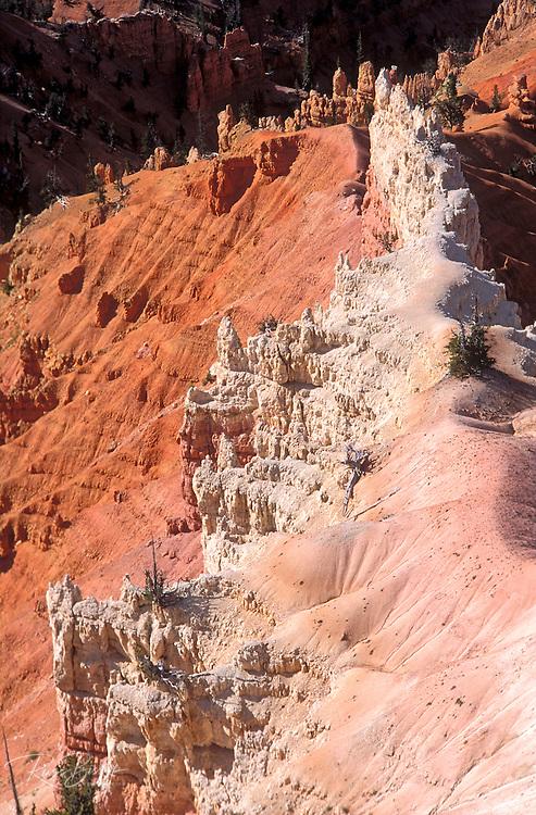 Morning light on colorful erosion in Lavender Canyon, Cedar Breaks National Monument, Utah