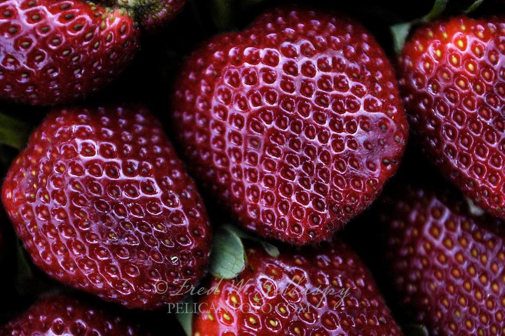 Watsonville Strawberry Cluster