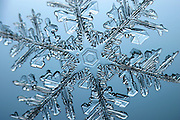 Snowflake with a stellar (or dendritic) crystal form, made in a cloud when water freezes at negative fifteen degrees Celsius. When crystallization occurs slowly, in calm air and in temperatures near the freezing point, snowflakes will exhibit hexagonal symmetry.