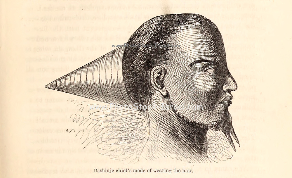 Bashinje Chief's mode of wearing the Hair From the Book ' Missionary travels and researches in South Africa ' including Sixteen Years Residence in the Interior of Africa. by Dr. David Livingstone Published in New York by Harper & Brothers 1858