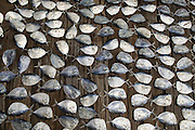 Fish laid out to dry can be seen at Silosor Barga's roadside stand in Hadakewa, Lebatukan subdistrict, Lembata district, East Nusa Tenggara province, Indonesia.