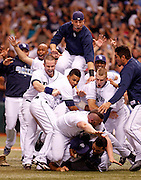 SP_296217_CASS_rays_17<br /> BRIAN CASSELLA   |   Times<br /> (10/19/2008 ST. PETERSBURG) Rays celebrate after beating Boston 3-1.<br /> <br /> <br /> MAJOR LEAGUE BASEBALL - Tampa Bay Rays vs Boston Red Sox at Tropicana Field in Game 7 of the ALCS on Sunday (10/19/08).