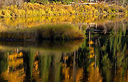 Yaak River and forest reflections  of western larch in fall. Yaak Valley Montana