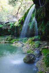 Waterfall on Little Bee Creek, Los Madrones Ranch in the Hill Country, Texas, USA.