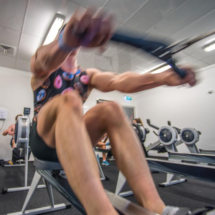 Zack Rumble, Canterbury Rowing Club<br /> <br /> SRPC squad ergometer training at HPSNZ Apollo Sports Centre, Christchurch. Tuesday 20 November 2018 © Copyright photo Steve McArthur / @RowingCelebration