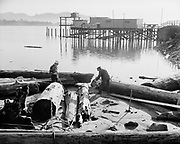 0001-E237. Sawing driftwood on Taft, Oregon, waterfront. Now part of Lincoln City. January 5, 1958.