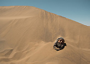 A guide takes a sand bath in the Lut desert.