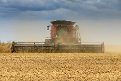 A large combine harvests a field of soybeans and dumps the grain into a large wagon for transportation to a semi-tractor trailer to haul to the processing facility