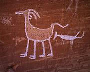Very distinct bighorn sheep pictograph, Grand Gulch Primitive Area, Bears Ears National Monument, Utah.