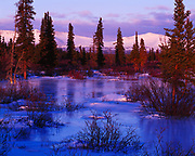 Frozen overflow along Jarvis Creek with the Ruby Range beyond, Yukon Territory, Canada.