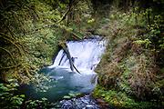 Lower North Falls, Silver Falls State Park, Oregon