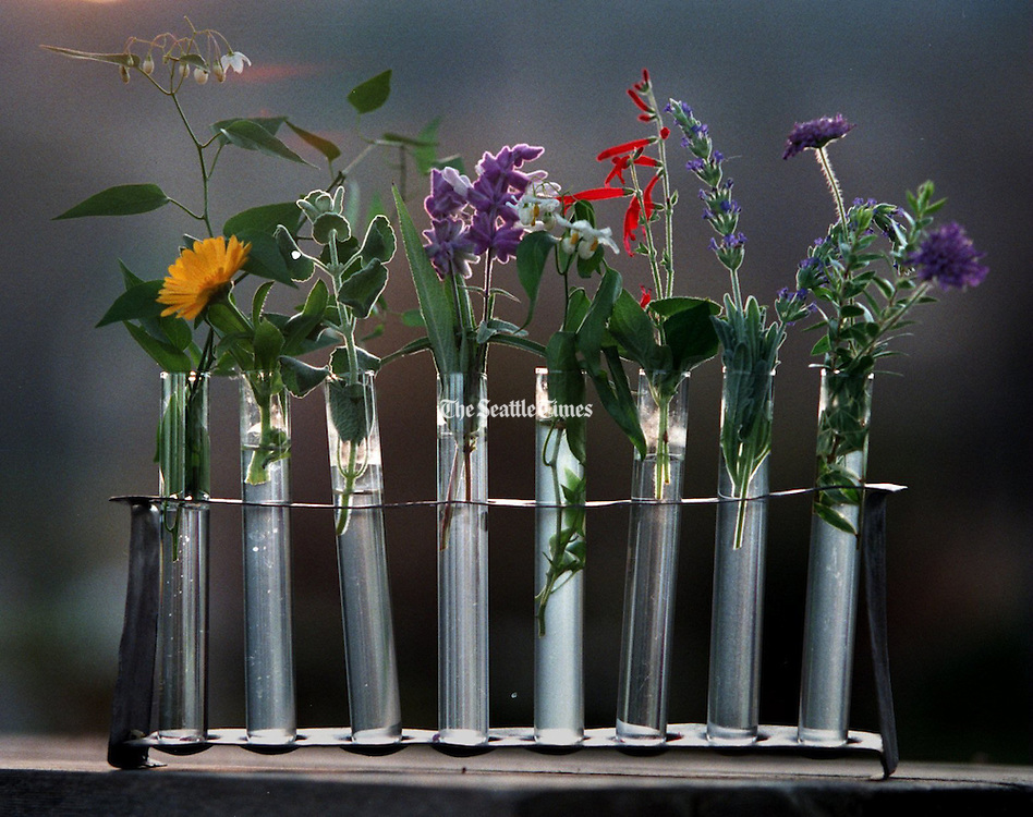 Various herbs sit in vials that rest in a silver rack.  (Ellen M. Banner / The Seattle Times)