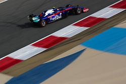 March 30, 2019 - Sakhir, Bahrain - Motorsports: FIA Formula One World Championship 2019, Grand Prix of Bahrain, ..#23 Alexander Albon (THA, Red Bull Toro Rosso Honda) (Credit Image: © Hoch Zwei via ZUMA Wire)