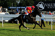 "Knight Commander ridden by Raul Da Silva and trained by Steve Flook in the Play ""Four From The Top"" At Valuerater.Co.Uk Handicap (Value Rater Racing Club Summer Stayers' Qual) race.  - Ryan Hiscott/JMP - 02/08/2019 - PR - Bath Racecourse - Bath, England - Race Meeting at Bath Racecourse"