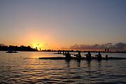 2017 Miami Hurricanes Women's Rowing Photo Day