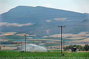 Griekenland, Larissa, 5-7-2008Droogte in de Griekse landbouwgebieden.Het land wordt beregend.Drought in the greek agricultural areas. Foto: Flip Franssen