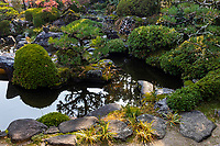 """Shobo-ji  Pond Garden - Shobo-ji was established in 754 by a monk called Chii - a disciple of Ganjin, who built Toshidai-jiin Nara.  Like many temples in Kyoto, Shobo-ji was burned during the wars, then reconstructed in 1615. The temple has two interesting zen gardens, particularly the """"Beasts and Birds Garden"""" named after the shape of some of its rocks. The temple grounds are elevated compared to the rest of the valley, which gives a view of the surrounding area wthat incorporates borrowed scenery such as the distant mountains into the overall garden design.  Shobo-ji pays particular attention to flowers; ikebana can be seen on the temple grounds and in the buildings. In addition, the tsukubai water basin is usually decorated with flowers as well."""
