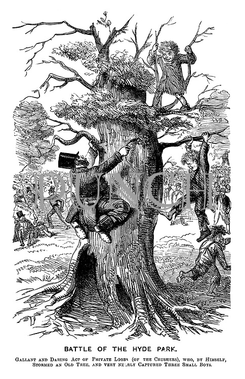 Battle of the Hyde Park. Gallant and daring act of Private Lobbs (of the Crushers), who, by himself, stormed an old tree, and very nearly captured three small boys.
