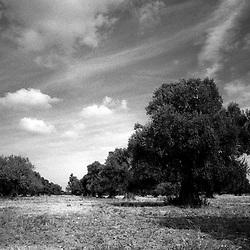 Taranto punti di vista