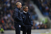 Brighton Manager, Chris Hughton and Brighton Assistant Manager, Paul Trollope during the EFL Sky Bet Championship match between Brighton and Hove Albion and Fulham at the American Express Community Stadium, Brighton and Hove, England on 26 November 2016.