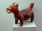 MEXICO, MEXICO CITY MUSEUM Colima; ceramic dog with corn