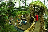 Amazon Rainforest, Aububon Aquarium of the Americas, New Orleans, Louisiana, USA