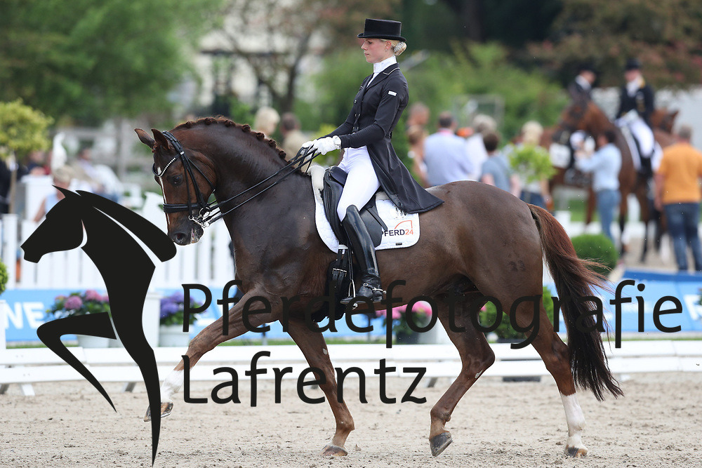 Brunkhorst, Juliane (GER) Fürstano<br /> Balve - Optimum 2016<br /> © Stefan Lafrentz